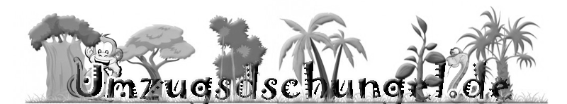 Logo - Ernst Struwe Möbelspedition